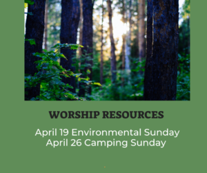 picture of trees and link to worship section