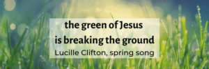 grass blades with qute The green of jesus is breaking the ground