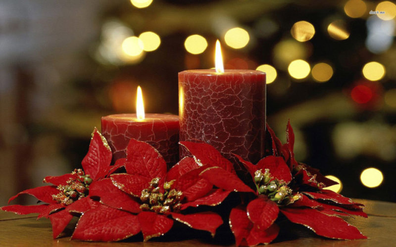 2 lit red candles amongst poinsettia blossoms