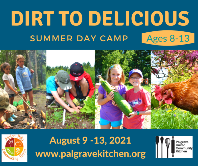 Summer Day Camp at Palgrave United