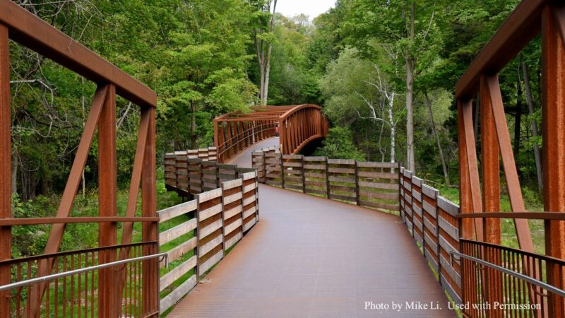 pathway and bridge through the woods